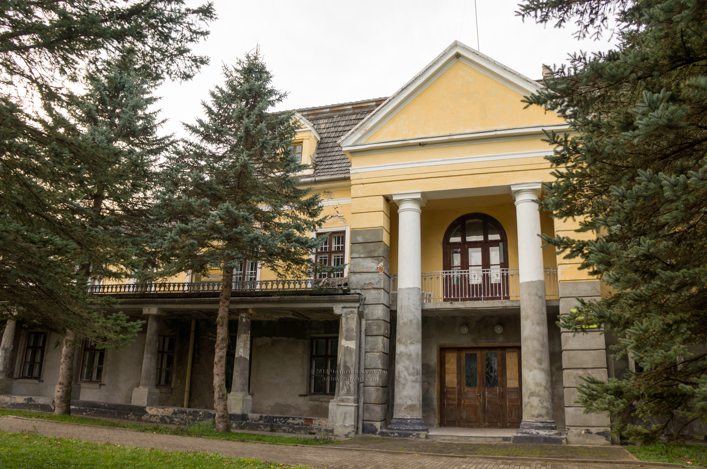 Палац Дідушицьких