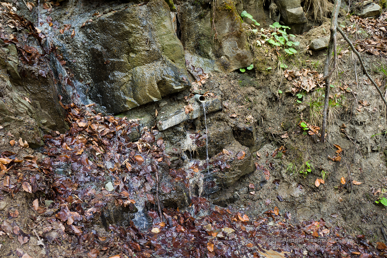 Джерело з мінеральною водою