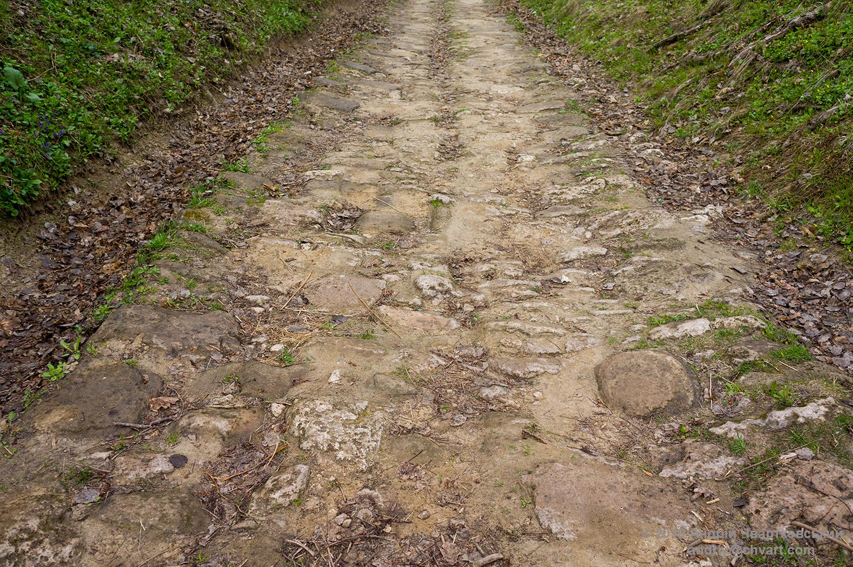 Стара дорога вимощена бруком
