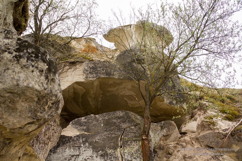 Схил Рожаницької гори