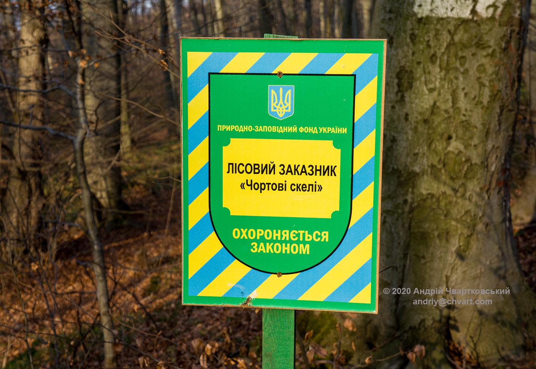 Лісовий заказник