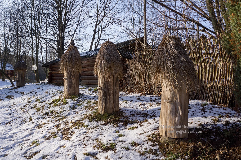 Пасіка (20-х рр. ХХ ст.) з села Осмолода