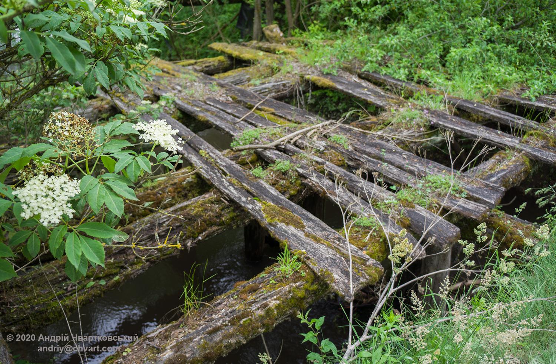 Залишки старого дерев'яного мосту